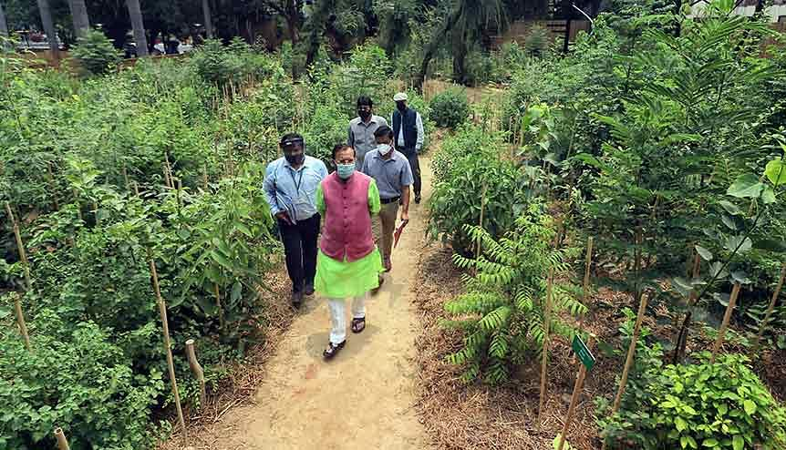 Union Environment Minister Prakash Javadekar inaugurates a unique Urban Forest at the Office of the CAG of India. Help is coming in from beyond India's shores to drive home the benefits of green finance.