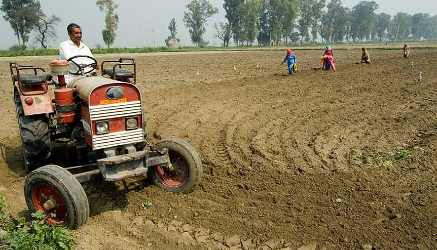 The liberalising of the farm sector and opening it up to foreign and domestic corporate investments is expected to show results soon. Credit: Getty Image