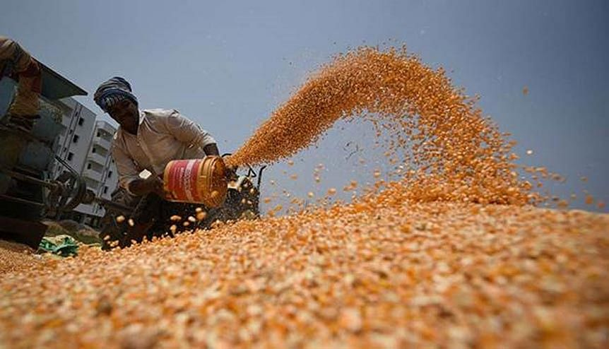 IMF endorses farming reforms by Indian government