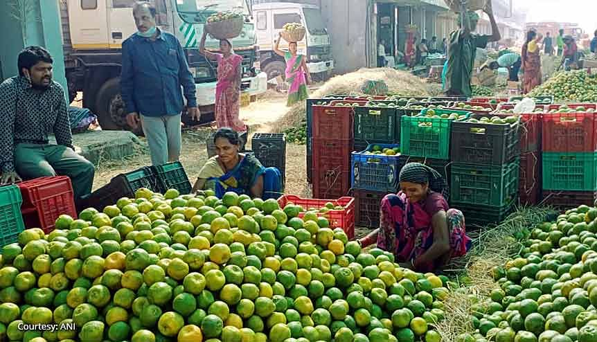Farmers and sellers rejoice the high yield in orange farming in Nagpur. The higher allocation towards the PM-KISAN income support scheme hugely benefited a large section of the farming community during the pandemic.