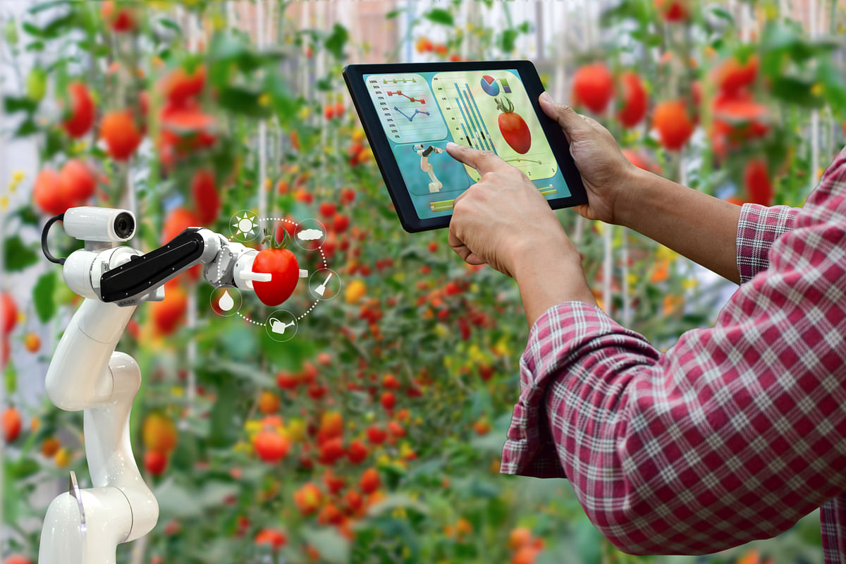 The advent of AI has been a huge boon to agriculture due to the benefits of a data-driven approach to farming.