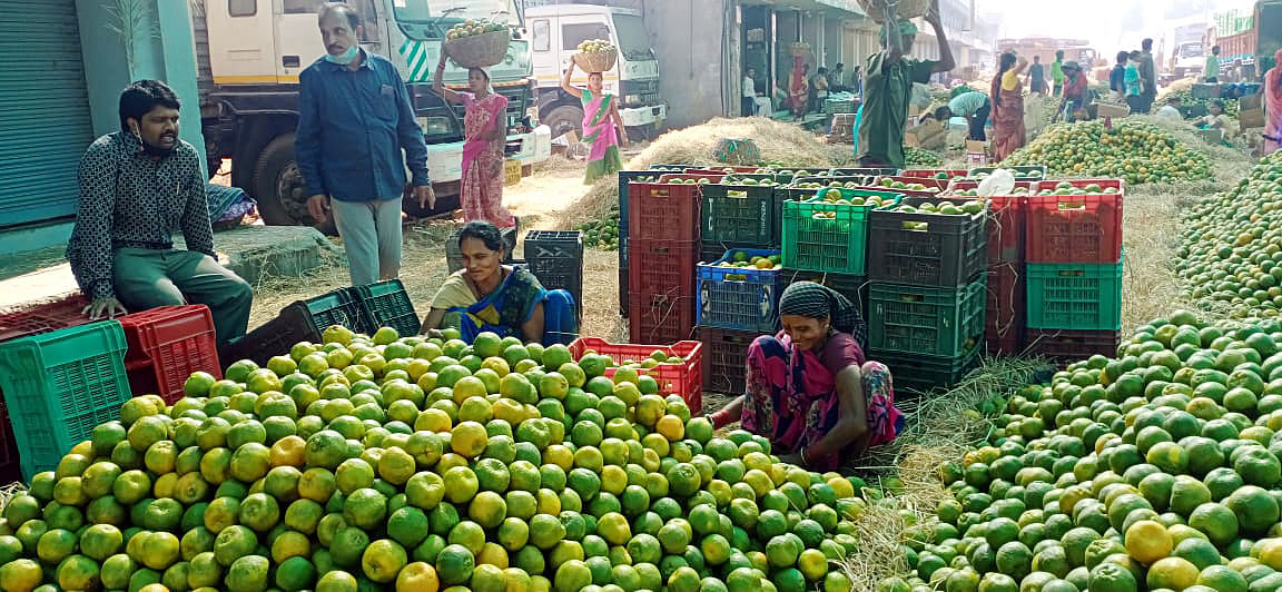 Farmers displaying oranges for sale. The government has been trying to assist smaller farmers with infrastructure and other facilities to enable them and help them achieve self-sufficiency.