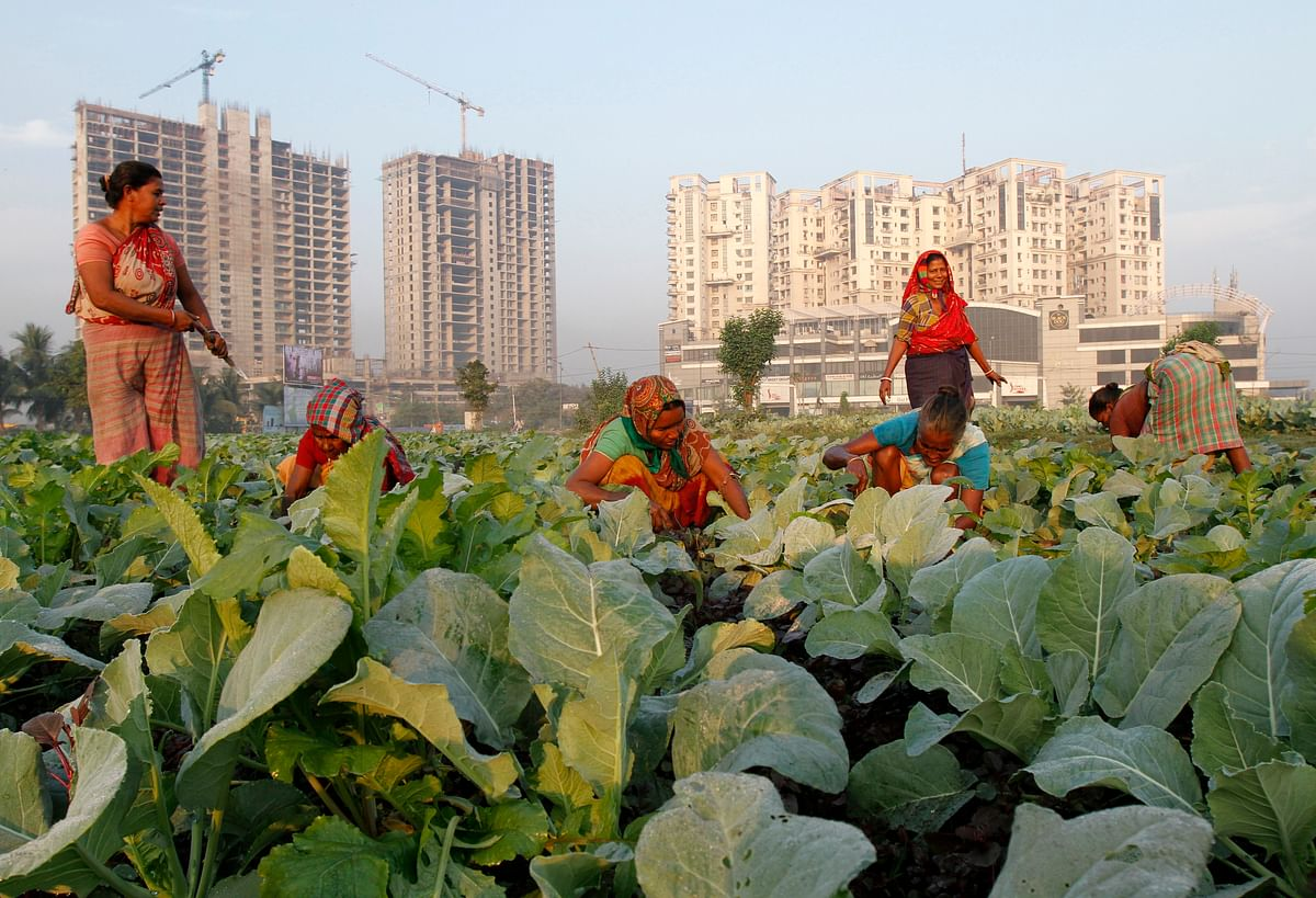 Women work in a cauliflower field in Kolkata. Rural demand and other encouraging signs have given India's policymakers reason to think the worst of the two-year economic slump may be over. In order to ensure women entrepreneurs continue to get support it is essential to build women-entrepreneurship communities can help in enabling projects to continue.