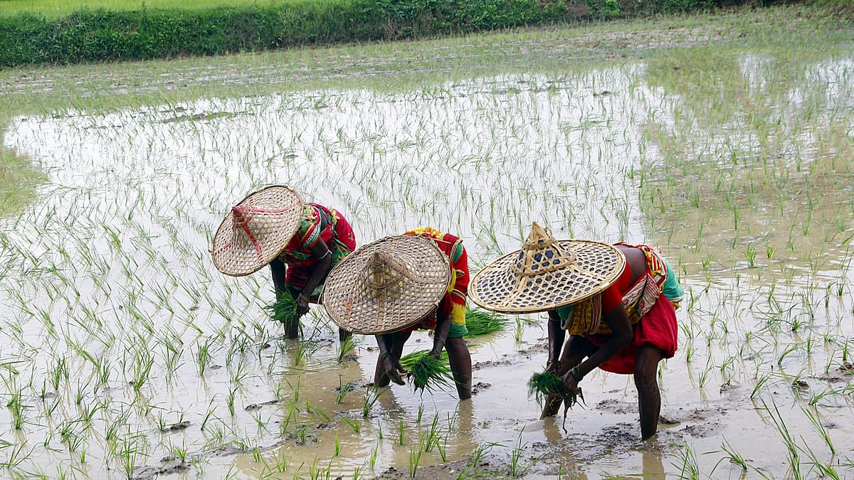 Will the monsoon season shower the Indian economy with good fortune?
