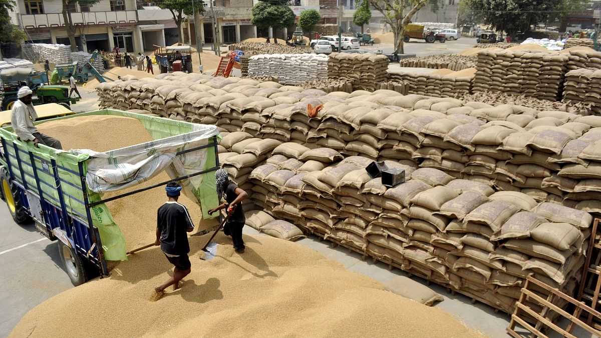 A record foodgrains harvest gives India the problem of plenty