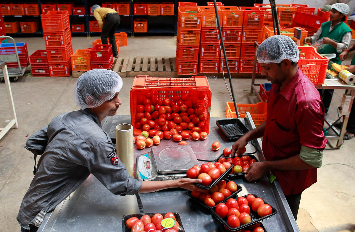 Employees arrange tomatoes before weighing them at a Big Basket warehouse. E-tailers like Bigbasket.com and Localbanya.com turn in profits while supermarkets are struggling.