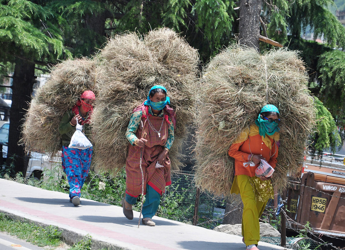 Rural India did not throw up a positive report card given the effects of the pandemic. People out in the hinterland have downtraded to lower priced products in all categories except commodities.