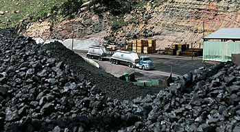 Coal import witnesses growth