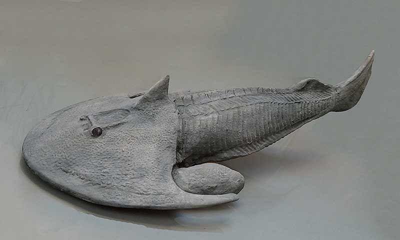Have you heard of the dangerous Devonian era?