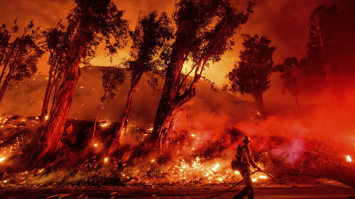 California wildfires reach edge of sequoia grove, home to world's largest tree