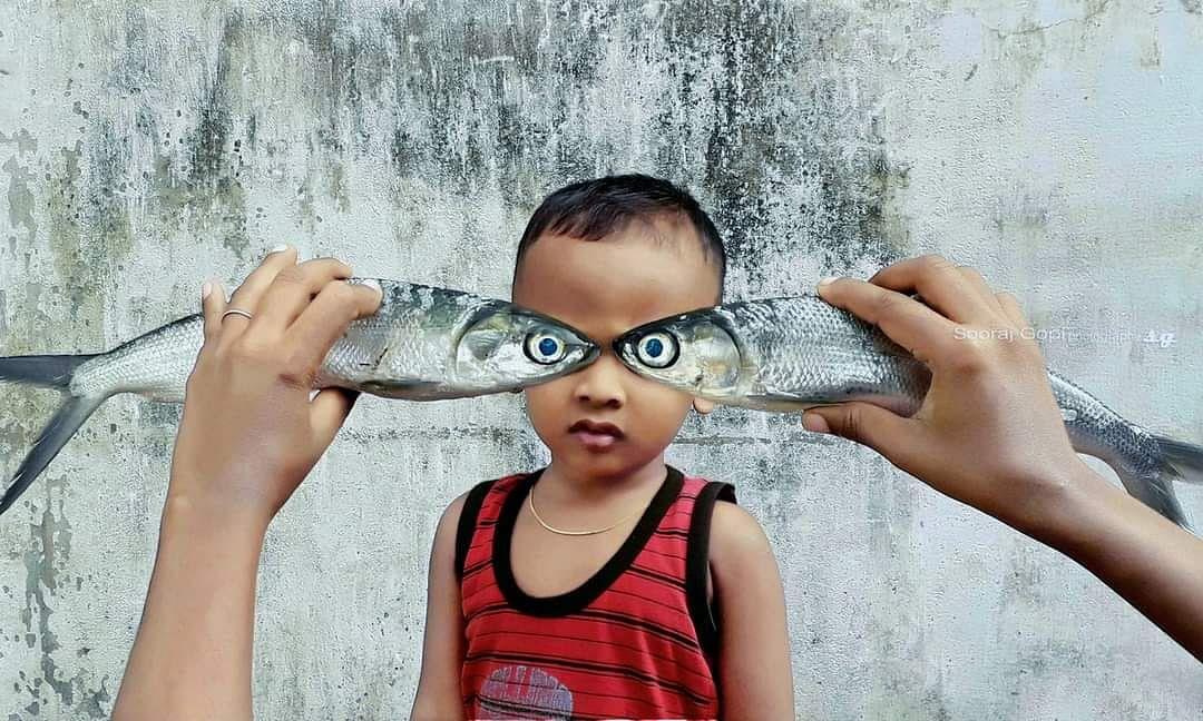 Creative fish eyes