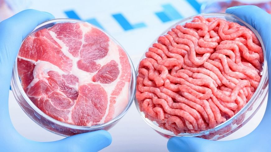 Singapore becomes 1st country to approve sale of lab-grown meat