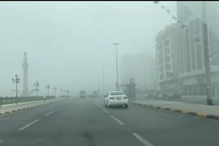 Woman driver in Ajman commits 414 traffic violations in 3 years, incurs Dhs247,000 fine