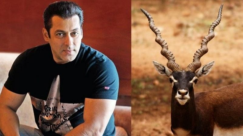 Salman khan| Blackbuck case| Jodhpur court dismisses Rajasthan Govt's plea