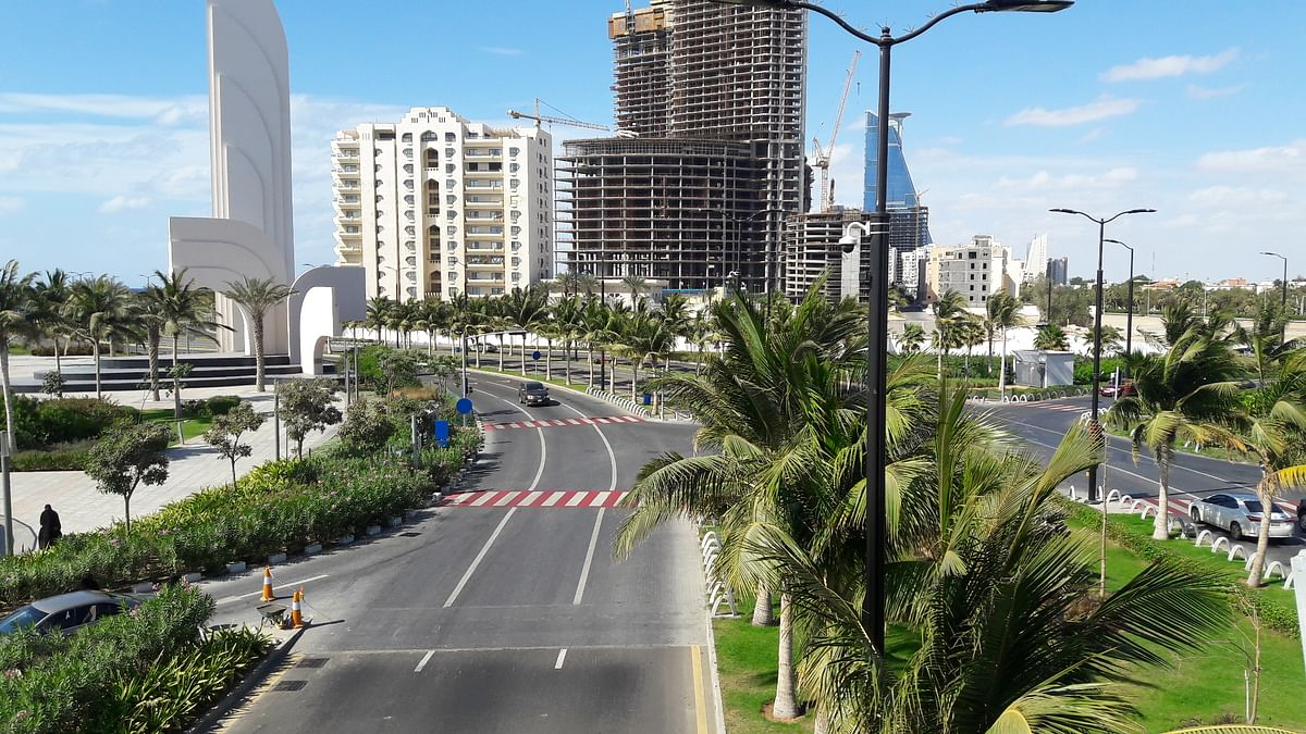 Saudi prohibits planting palm trees on roads and parks