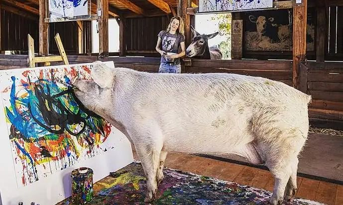 Meet Pigcasso, the artistic pig whose paintings are sold for over Rs 2 Lakhs