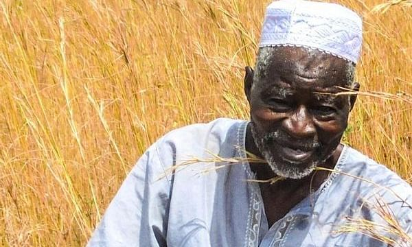 Meet Yacouba Sawadogo, farmer from Burkina Faso who turned a desert in a full-fledged forest