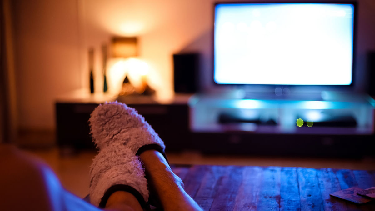 US website offers ₹74,000 to binge-watch home improvement TV shows