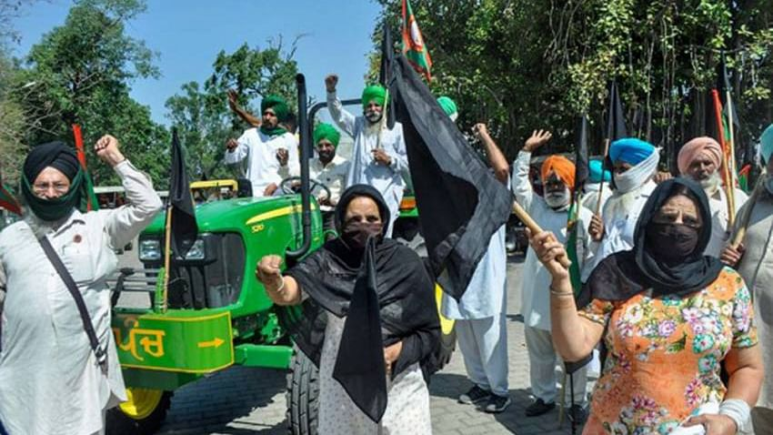 Farmers observe 'Black Day' to mark six months of protests against centre's new agri laws