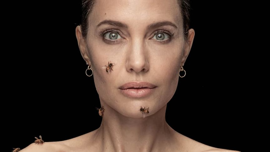 Angelina Jolie gets covered in bees for 18 minutes on World Bee Day for National Geographic