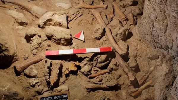 Remains of 1,00,000 year-old Neanderthals 'killed by hyenas' discovered in Italian cave