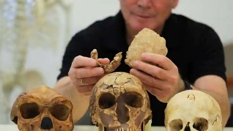 Nesher Ramla Homo: New form of ancient human unearthed in Israel