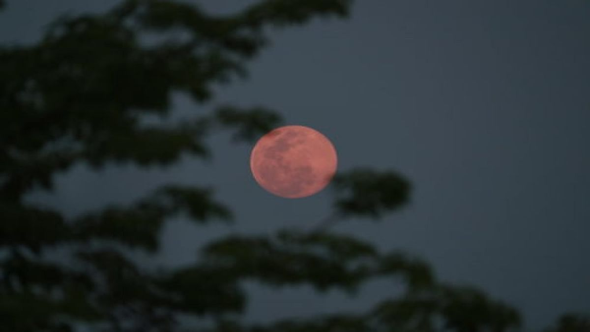 Strawberry Moon 2021 to appear in sky today