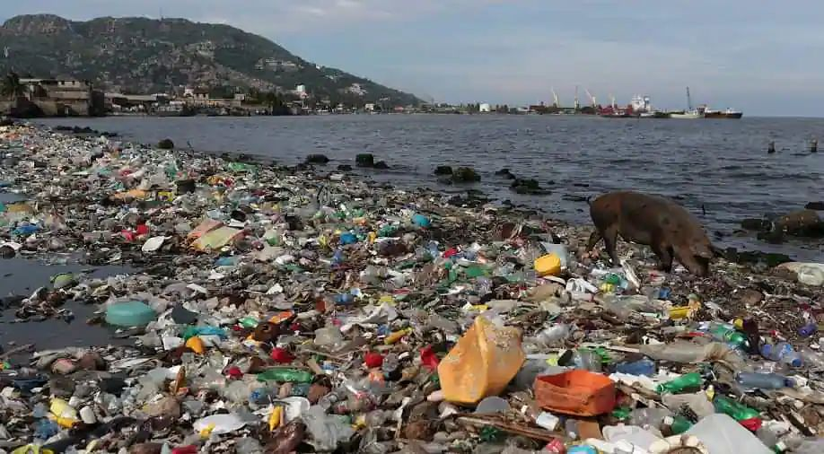 Avoid Single-Use Plastic and Save The Environment
