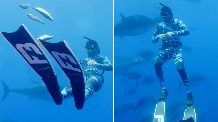 Sheikh Hamdan goes diving with bluefin tunas in the Mediterranean