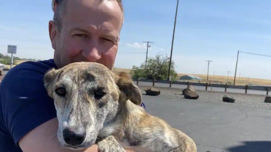 British ex-marine survived Kabul attack with 200 animals