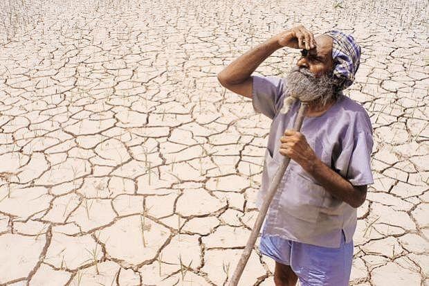 Bharat Bandh: Traffic hit across Punjab, Haryana, UP, Delhi as farmers protest