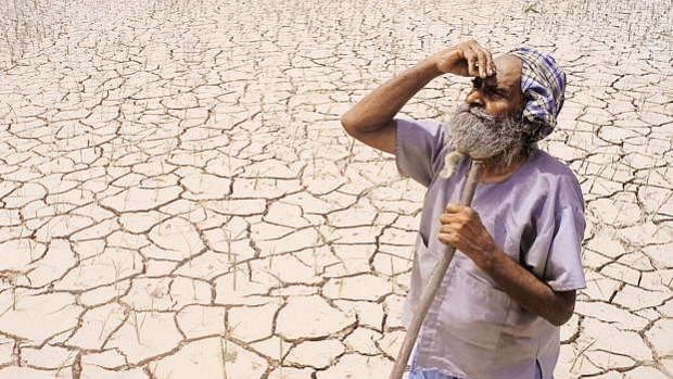 It rains when farmers sing Tejaji songs in Rajasthan; even Cambridge scientists are baffled