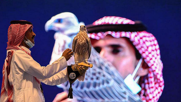 This falcon in Saudi Arabia has been sold for $72,000