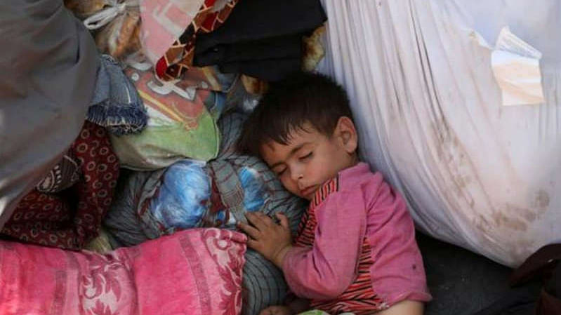 Evacuated Afghan kids need new livers after eating poisonous mushrooms in Poland