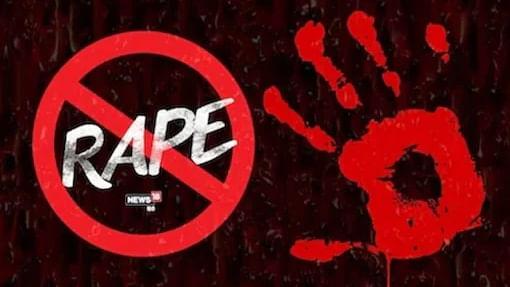 Sexual intercourse between husband & wife not rape, even if by force: Chhattisgarh HC
