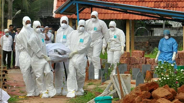 Explained: What is Nipah virus, causes, symptoms and all you need to know