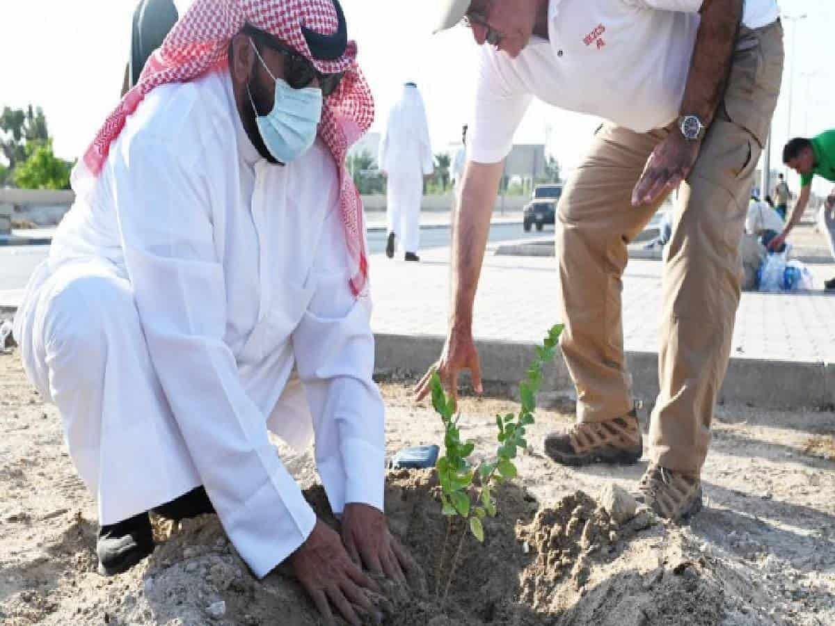 Kuwait launches tree-planting campaign to address climate challenges