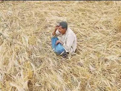 """""""ஊரடங்கால் மீண்டும் அதிகரித்த விவசாயிகள் தற்கொலை"""" : கடந்த 60 நாட்களில் 109 விவசாயிகள் பரிதாப பலி!"""