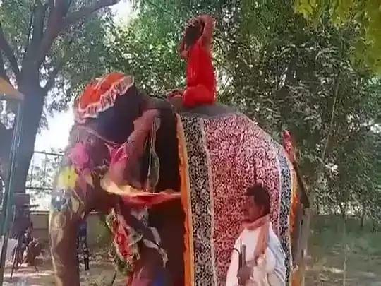 'யானை மீது யோகா செய்த பாபா ராம்தேவுக்கு நேர்ந்த கதி' -இணையத்தில் பரவிவரும் பரபரப்பு வீடியோ!