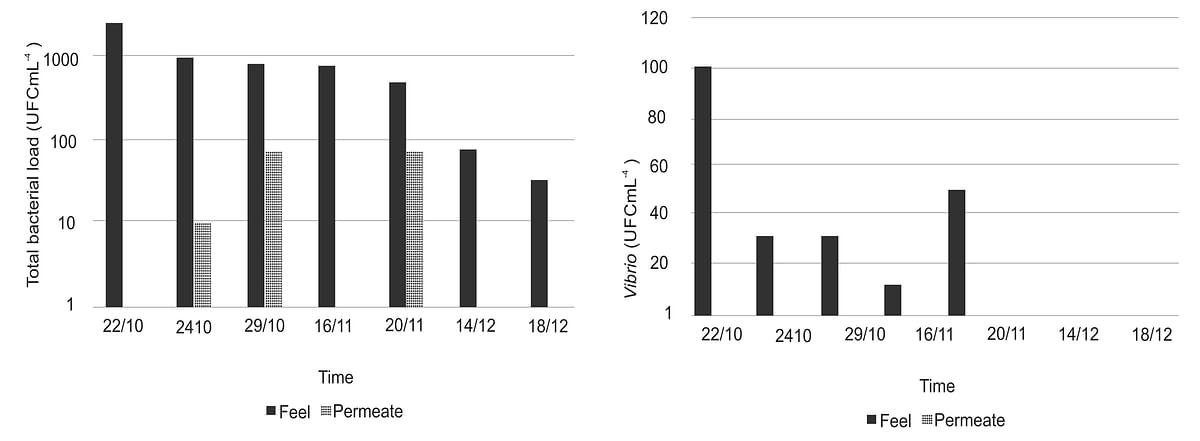 Evolution of bacterial quality of seawater feeding the pilot, initial and final permeate – a. Total bacterial load and b. Vibrio