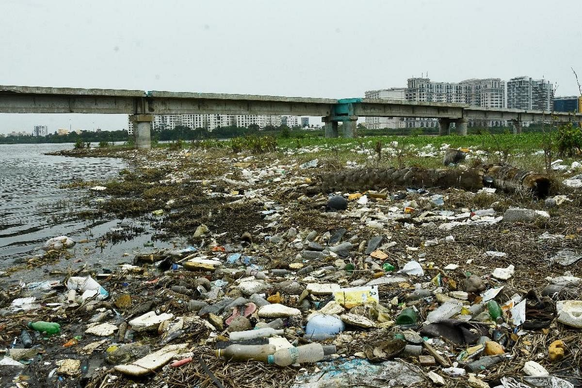 Plastic debris pile up near Adyar estuary