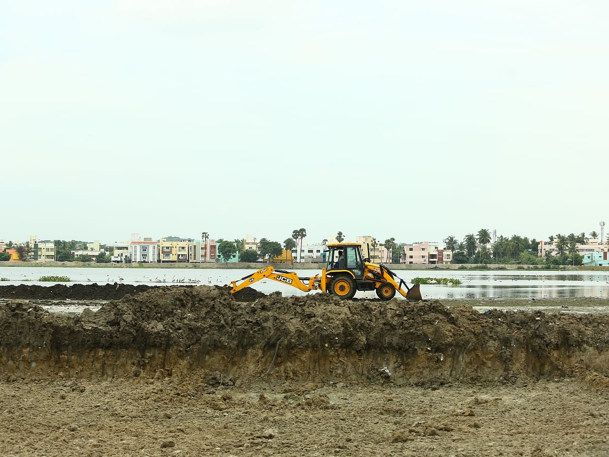 Cognizant and Grundfos Join Hands to Restore Sembakkam Lake