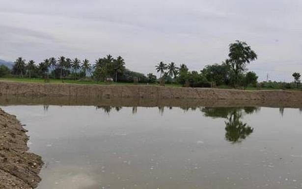 'Oorani' restored from encroacher brimming with water