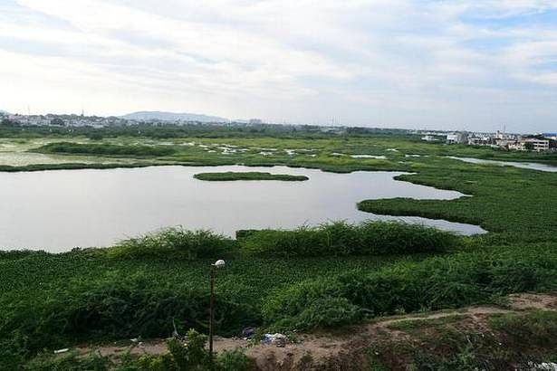 No industrial discharge found at Sellur tank: TNPCB report