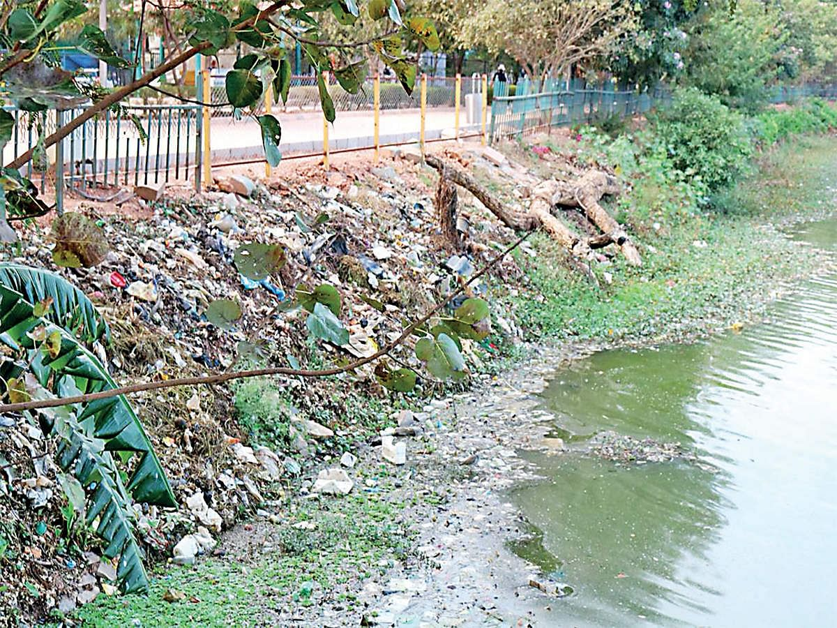 Bengaluru: Japanese method to clean Ulsoor Lake