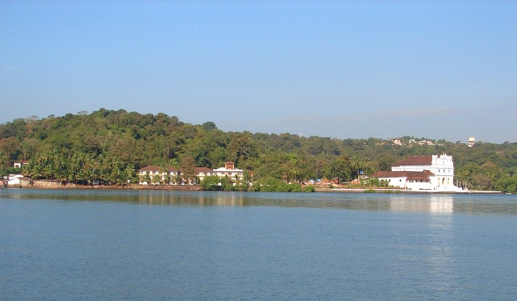 Lockdown improved water quality in Mandovi: National Institute of Oceanography