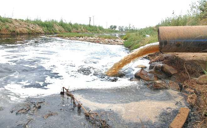 NGT pulls up Himachal's pollution control board over discharge of antibiotics residue into waterbodies