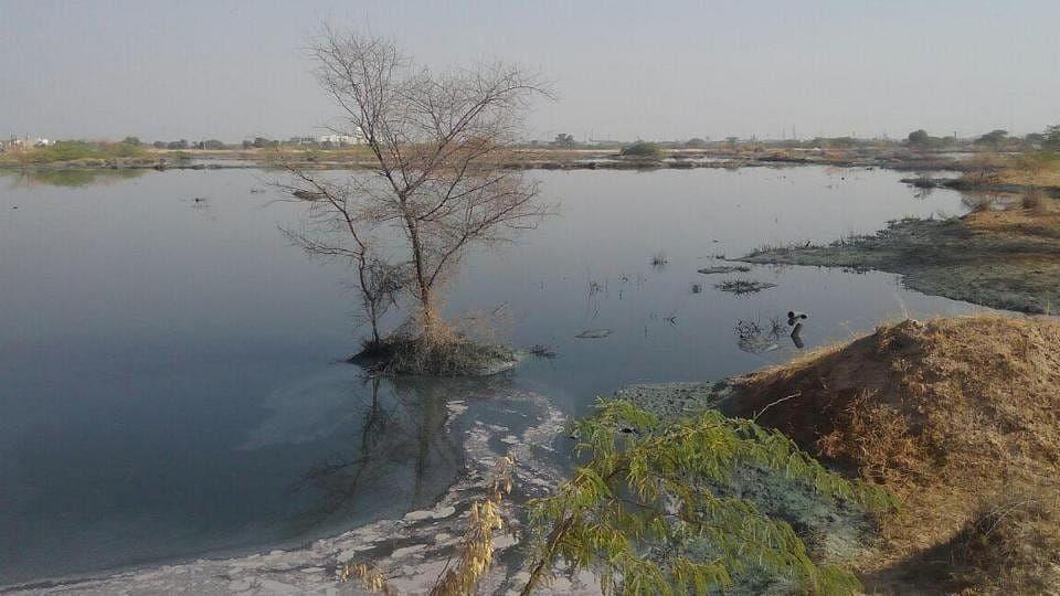 Jojari River