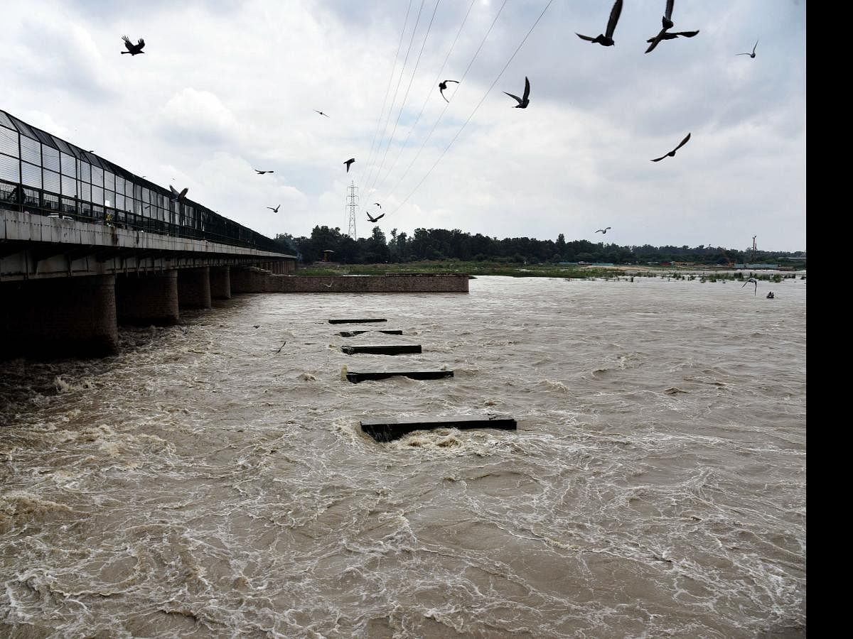 Delhi's 12 water treatment plants slapped with Rs 12 crore fine for polluting Yamuna