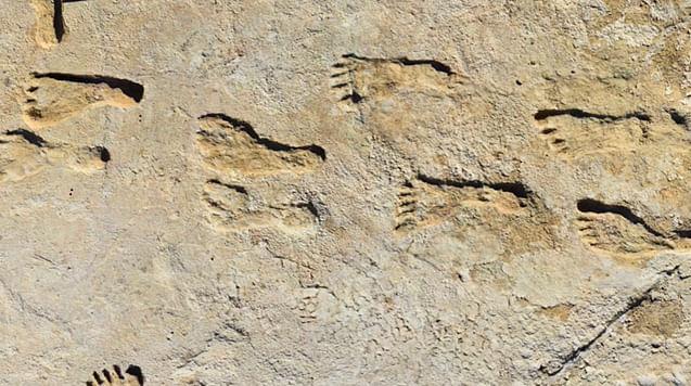 Hallan en Nuevo México las huellas más antiguas de América del Norte